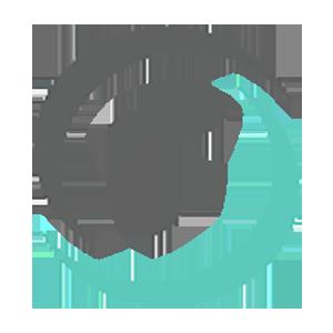 TrueUSD icon